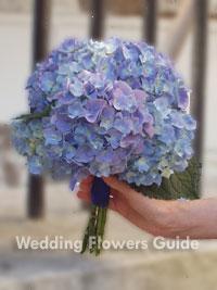 Blue Hydrangea wedding posy bouquet