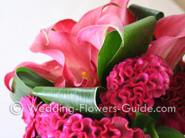 celosia and calla lily bouquet