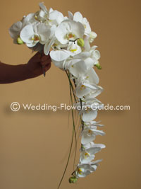 phalaenopsis orchid shower bouquet