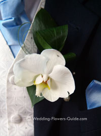 orchid boutonniere for a groom