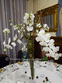 Real Weddings Lisa S Orchid Wedding Flowers